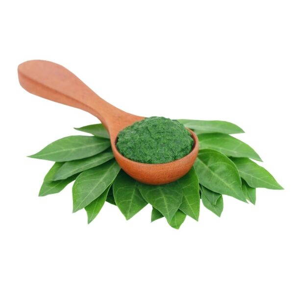 fresh henna leaves paste